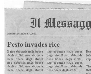 newspaper (4)